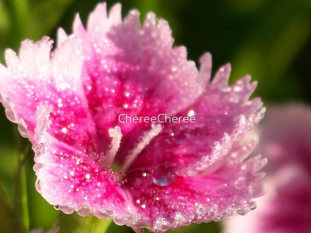 Wet Beauty by ChereeCheree
