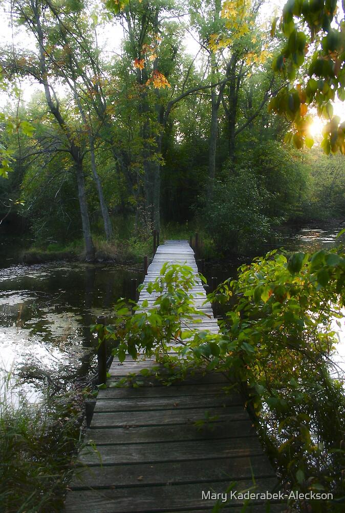 Footbridge to Nowhere by Mary Kaderabek-Aleckson