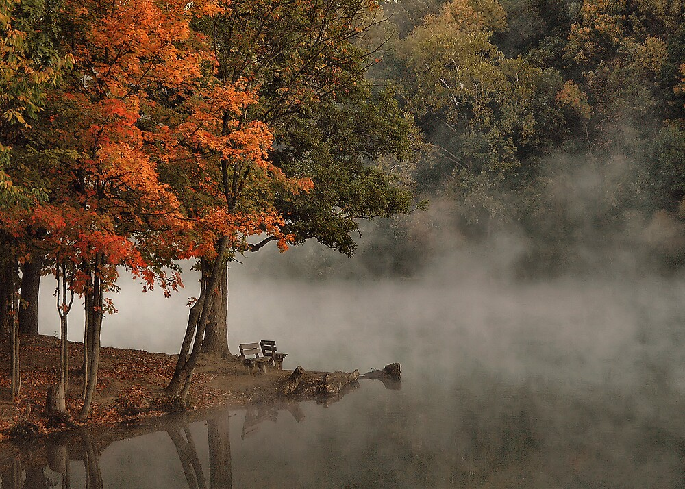 Fog in the Fall by VLBarnhill