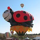 The Ladybug by CassPics