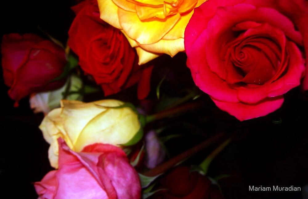 My Roses 15 by Mariam Muradian