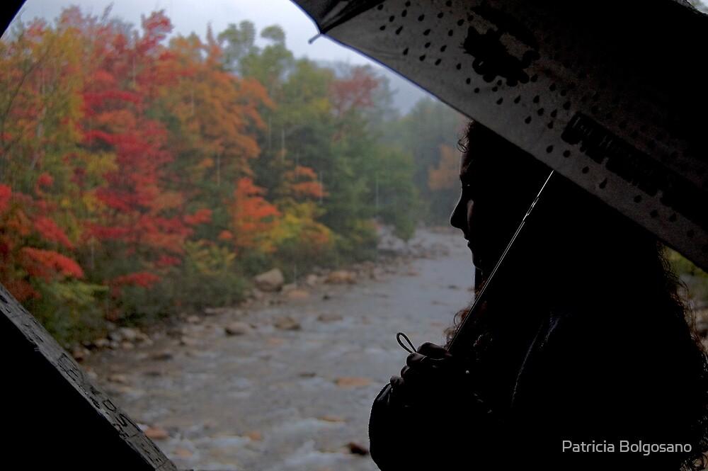Rain in Autumn by Patricia Bolgosano