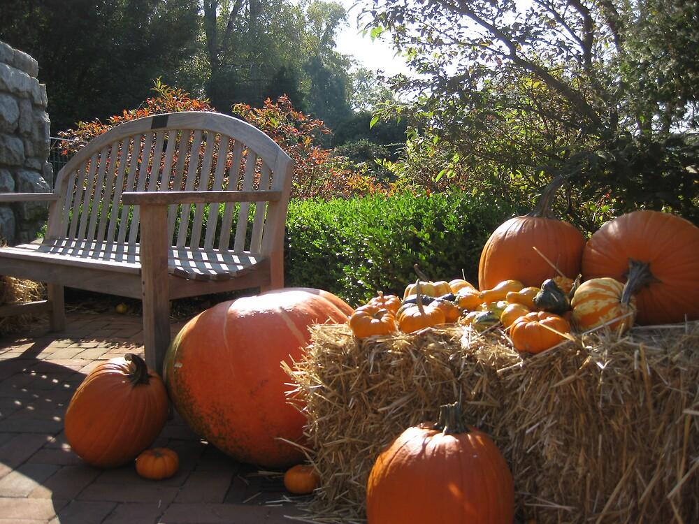 Autumns Harvest by proudpeno