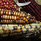 Indian Corn by WildestArt