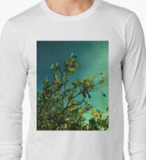 rosebush branches 10/20/17 Long Sleeve T-Shirt