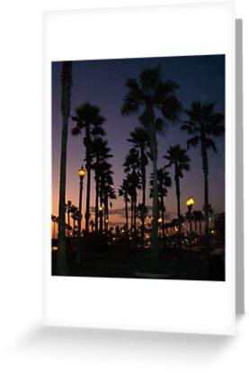 "Palm Skies Night by Lenora ""Slinky"" Ruybalid"