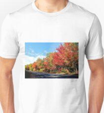 Autumn Along Route 705 Unisex T-Shirt