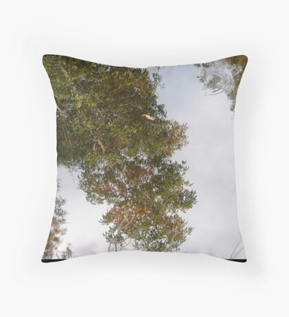 Reflection (or not) Throw Pillow