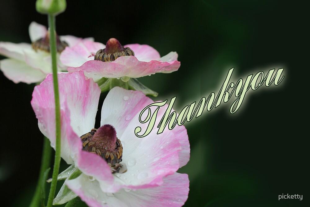 thankyou by picketty