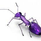 wonder ant 3 by ozgunevren