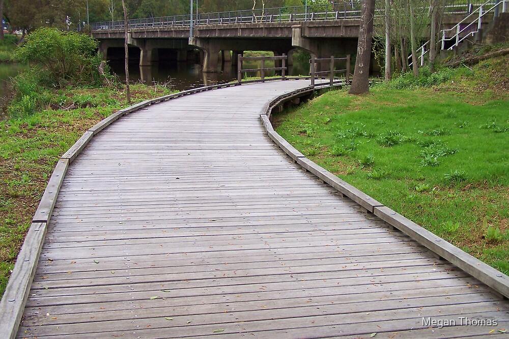 The path home by Megan Thomas