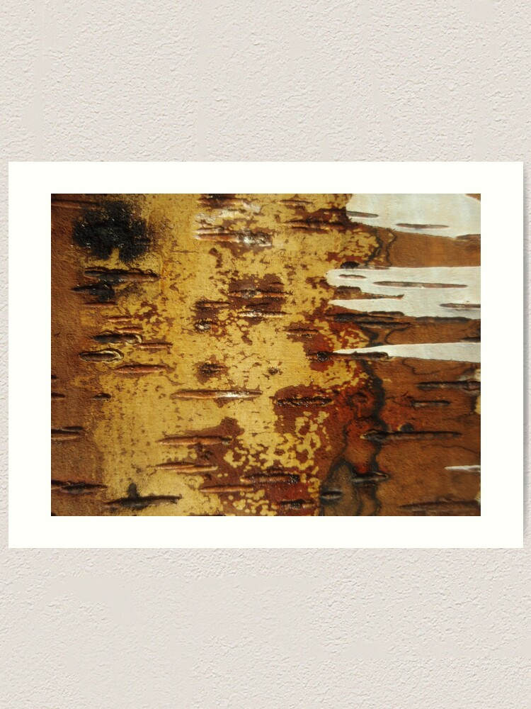 Alternate view of inside out white birch Art Print