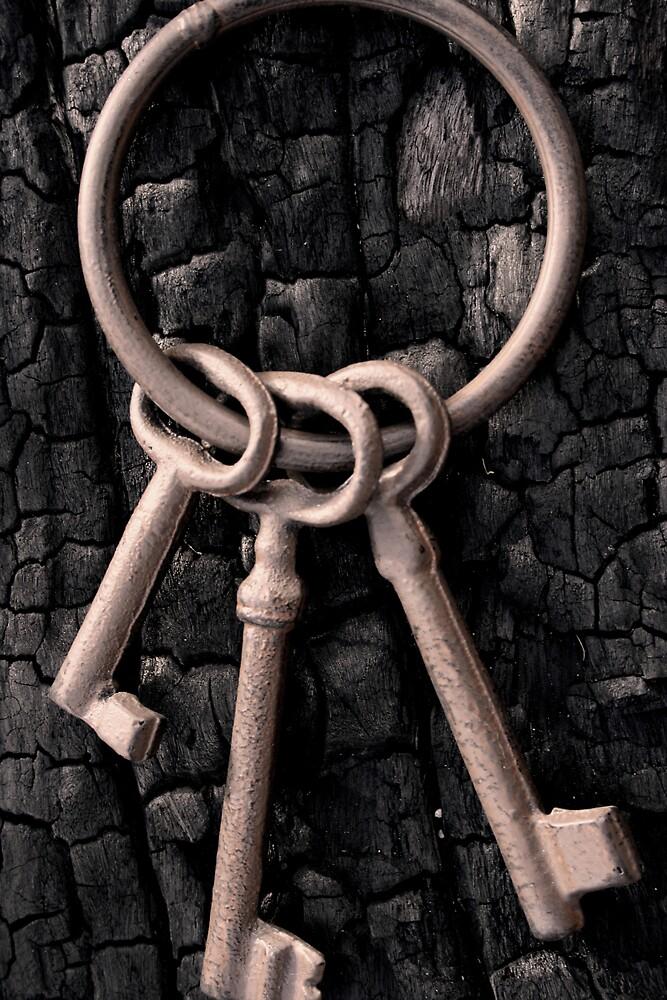 Rusted keys by livinoutbush