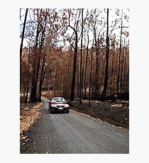 Ashen  driveway after fires of West Gippsland Photographic Print