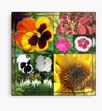 Spätsommer-Blumen-Collage Metallbild
