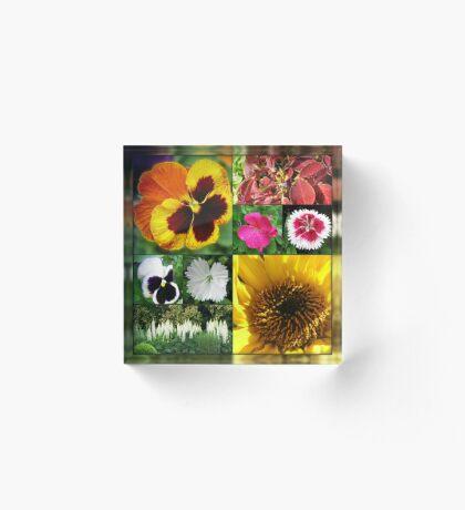 Spätsommer-Blumen-Collage Acrylblock
