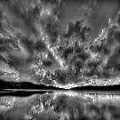 It's All In Black & White by Philip Johnson