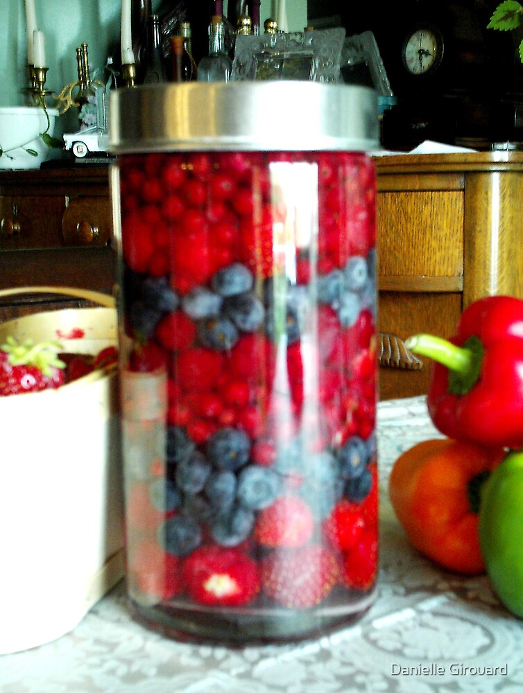 Field Berries Kirsh  by Danielle Girouard