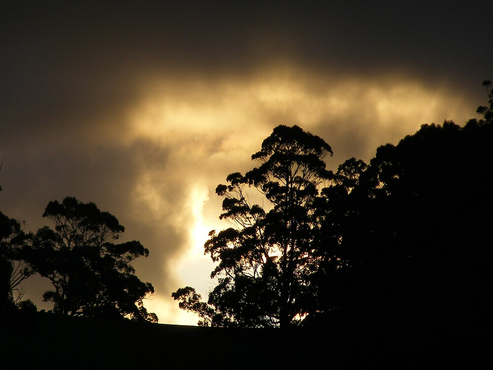 """""""explosion"""" of light from the dying sun,  Tasmania by gaylene"""