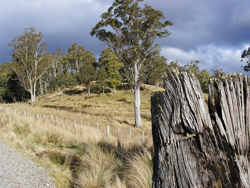 Loongana, Tasmania by gaylene