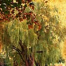 Willows of Autumn by MarianBendeth