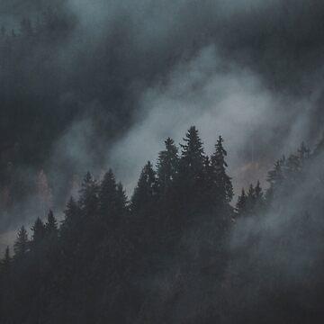 Foggy by ericamagugliani