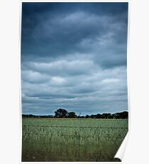 Wheatbelt Poster