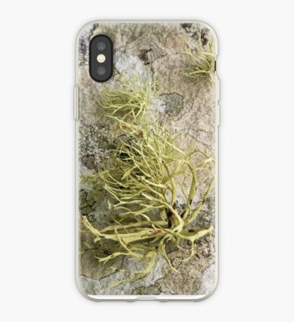 Lichen on tomb in Shalwy Valley, Kilcar, Donegal iPhone Case