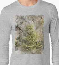 Lichen on tomb in Shalwy Valley, Kilcar, Donegal Long Sleeve T-Shirt