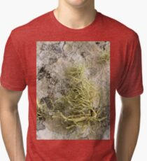 Lichen on tomb in Shalwy Valley, Kilcar, Donegal Tri-blend T-Shirt