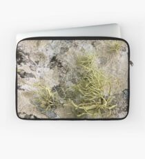 Lichen on tomb in Shalwy Valley, Kilcar, Donegal Laptop Sleeve
