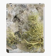 Lichen on tomb in Shalwy Valley, Kilcar, Donegal iPad Case/Skin