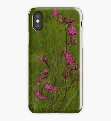 Red Campion in Burntollet Woods iPhone Case