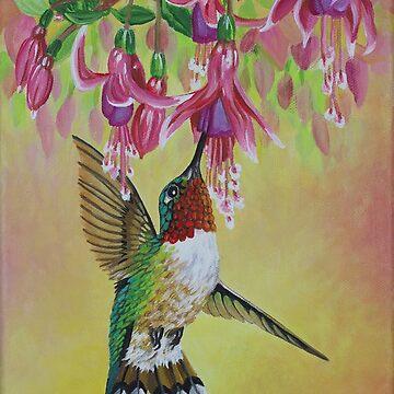 Anna's Hummingbird 3 by janegirardot