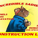 Incredible Sadie's Construction LTD by drusillak