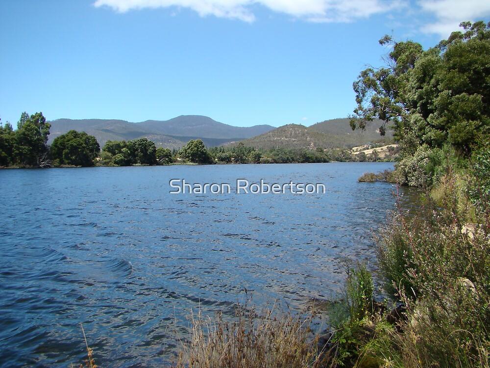 River in Tassie by Sharon Robertson