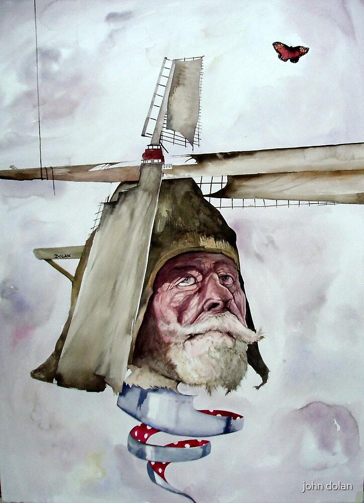 Quixotes madness by john dolan