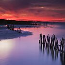 Lake Albert Sunset by KathyT