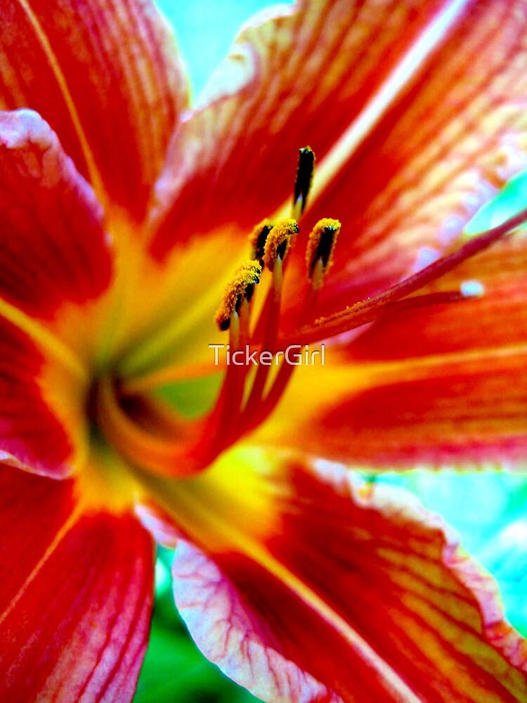 Summer Flower by TickerGirl