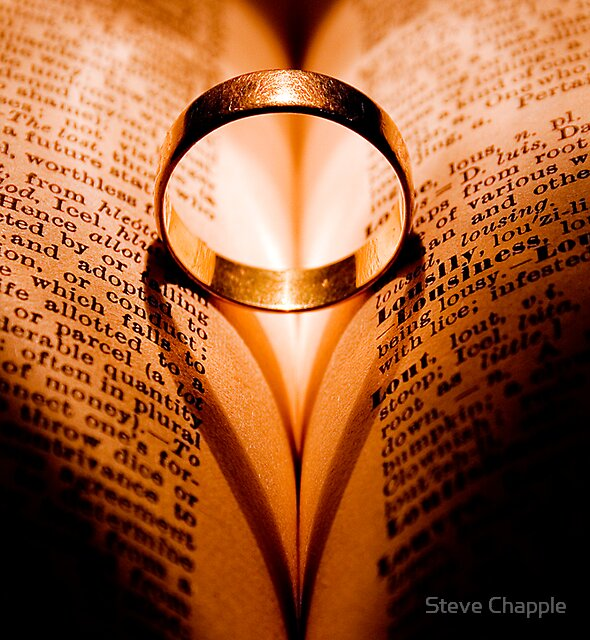 Love withstands all. by Steve Chapple