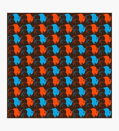 Orange Blue Buffalo Nation Photographic Print