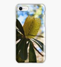 Australian Bottle Brush iPhone Case/Skin