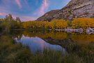 Sunset on an Aspendale Pond by photosbyflood