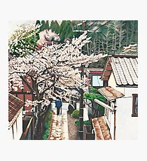 Passing by Cherry Blossoms Photographic Print