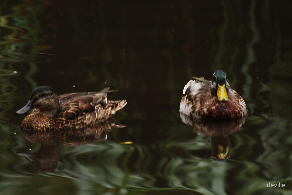 friends float by deville