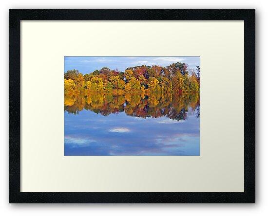 Autumn in Princeton by Caren