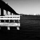 Bridge by Leonine