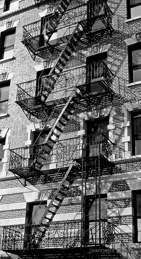 New York Apartments by Jeannette Sheehy