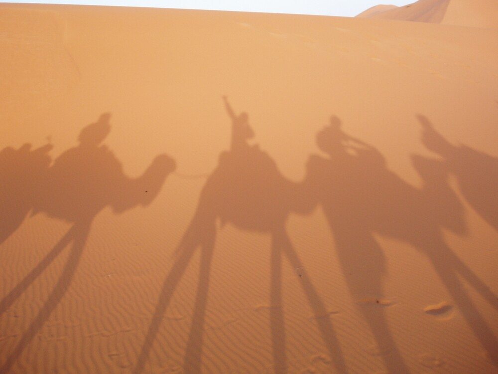 Shadows of the Sahara by Zack