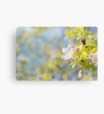 Blooming Tree Closeup Canvas Print